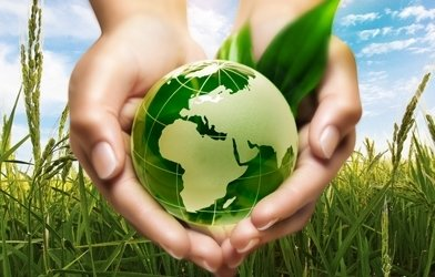 Rangkuman Rapat Pleno Ruu Konservasi Sumber Daya Alam Hayati Dan
